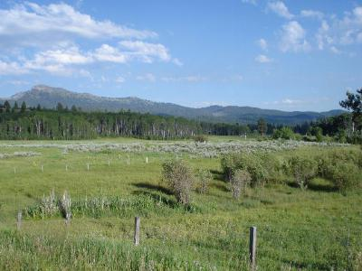 McCall Residential Lots & Land For Sale: Tbd Penne Lane Road