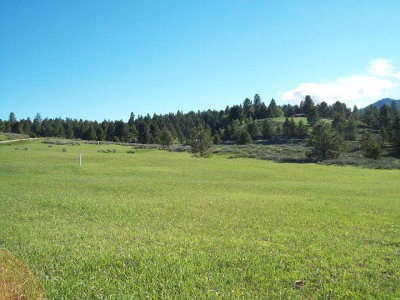 Cascade Residential Lots & Land For Sale: 10328 Gamann Drive