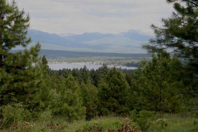 McCall Residential Lots & Land For Sale: 1897 North Club Hill Boulevard
