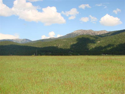 McCall Residential Lots & Land For Sale: 13765 Grouse Knoll Place