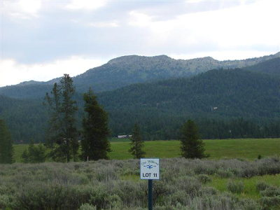 McCall Residential Lots & Land For Sale: 13784 Sweet Iron Court