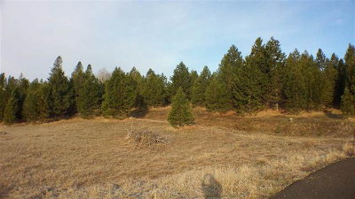 McCall Residential Lots & Land For Sale: Tbd Bella Vista Court