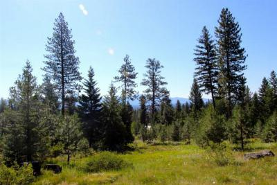 McCall Residential Lots & Land For Sale: 1624 Lakeridge Drive