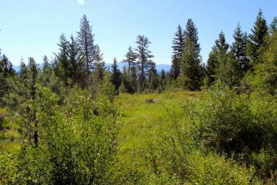 McCall Residential Lots & Land For Sale: 1626 Lakeridge Drive