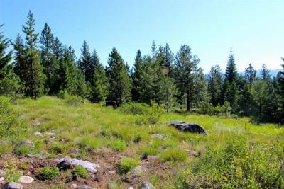 McCall Residential Lots & Land For Sale: 1647 Lakeridge Drive