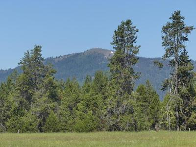 Donnelly Residential Lots & Land For Sale: Tbd Lot Hwy 55
