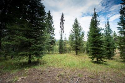 McCall Residential Lots & Land For Sale: 2014 Fox Fairway Court