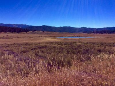 Cascade Residential Lots & Land For Sale: Lot 17 Wilderness Lake Ranch