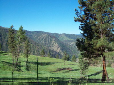 Riggins Residential Lots & Land For Sale: 1331 Slate Creek Road