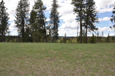McCall Residential Lots & Land For Sale: 211 Ferguson Way