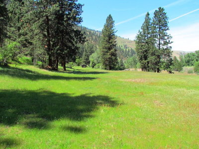 Adams County, Idaho County Residential Lots & Land For Sale: Tbd Whitebird Ridge Road