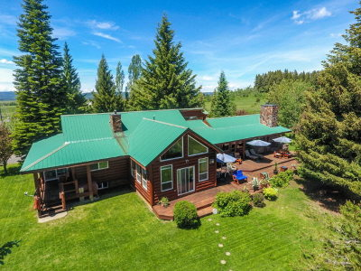 McCall Single Family Home For Sale: 50 Pearson Lane