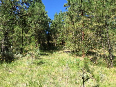 Cascade Residential Lots & Land For Sale: 12 Sunset Loop