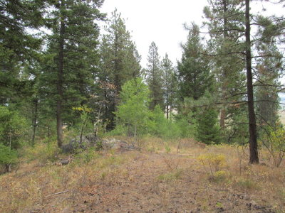 Valley County Residential Lots & Land For Sale: L3b2 Rehn Loop