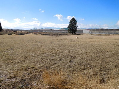McCall Residential Lots & Land For Sale: 3rd Stre 3rd Street