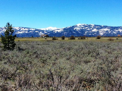 McCall Residential Lots & Land For Sale: Lot 8 Elk Haven Way