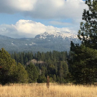 McCall Residential Lots & Land For Sale: 14030 Farm To Market Road