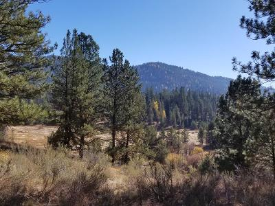 McCall Residential Lots & Land For Sale: Tbd Huckleberry Place