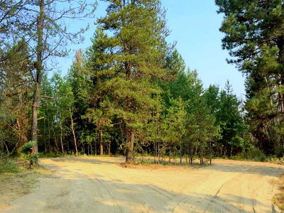 Cascade Residential Lots & Land For Sale: 3 W Prospectors Drive