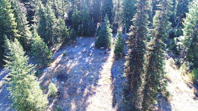 Valley County Residential Lots & Land For Sale: Tbd Eastside Drive