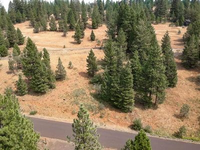 McCall Residential Lots & Land For Sale: Tbd Harrington Place