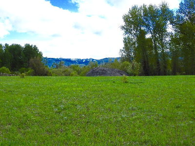 McCall Residential Lots & Land For Sale: Tbd Easy Street