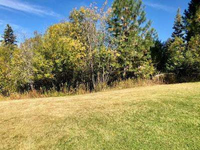 McCall Residential Lots & Land For Sale: 1004 Violet Way