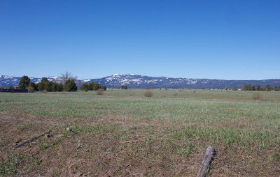 McCall Commercial For Sale: Tbd Hwy 55