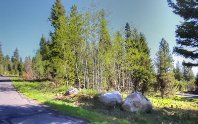 McCall Residential Lots & Land For Sale: 1645 Lakeridge Drive