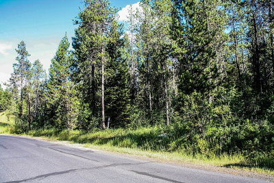 McCall Residential Lots & Land For Sale: 426-428 Colorado Street
