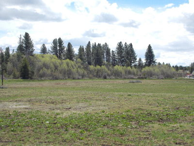 McCall Residential Lots & Land For Sale: Tbd Deinhard Lane