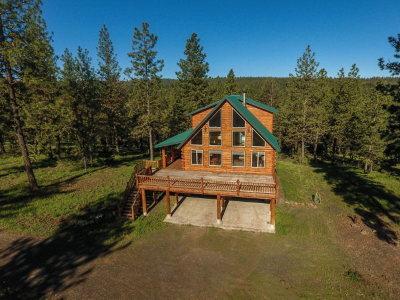 New Meadows Single Family Home For Sale: 2937 Syringa Drive