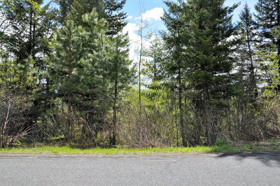McCall Residential Lots & Land For Sale: 1618 Lakeridge Drive