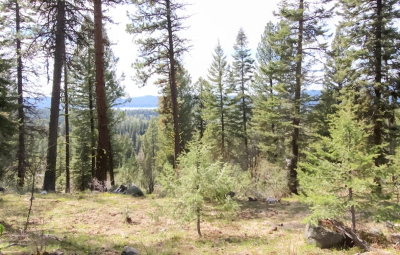 McCall Residential Lots & Land For Sale: Tbd Majestic View Circle