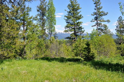 McCall Residential Lots & Land For Sale: 49 Sundance Drive