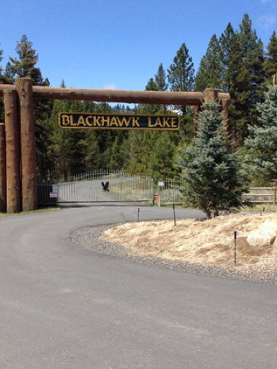 McCall Residential Lots & Land For Sale: 31 Reserve Court