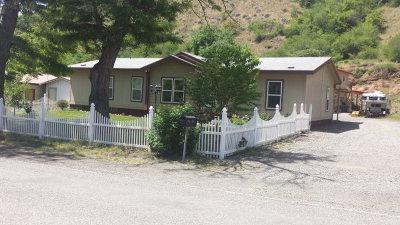 White Bird Single Family Home For Sale: 260 River Street