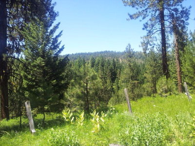McCall Residential Lots & Land For Sale: Lot 33 Moonbeam Circle