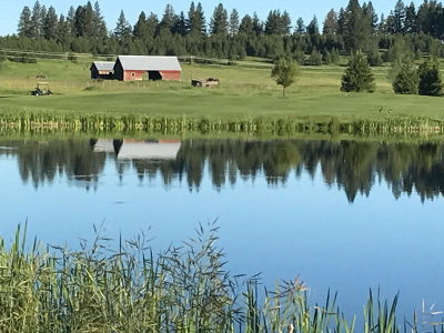 McCall Residential Lots & Land For Sale: 429 Wilhelm Creek Court