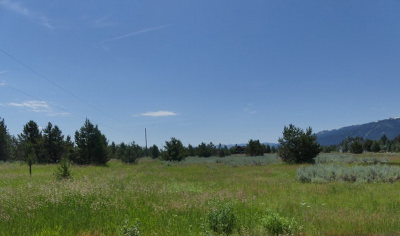 Donnelly Residential Lots & Land For Sale: 13254 Brookie Road