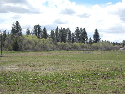 McCall Commercial For Sale: Tbd Deinhard Lane