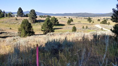 Cascade Residential Lots & Land For Sale: 10316 Emma Loop