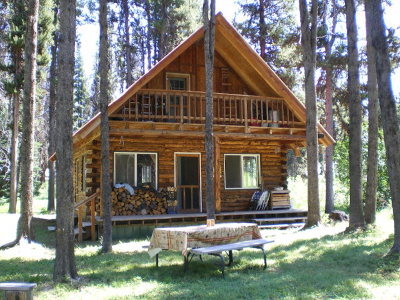 Idaho County, Valley County Single Family Home For Sale: 489 Secesh River Road