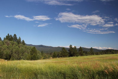 McCall Residential Lots & Land For Sale: Tbd Comfort Road