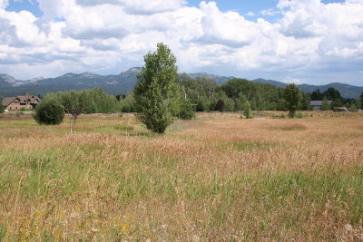 McCall Residential Lots & Land For Sale: Lot 97 Easy Street