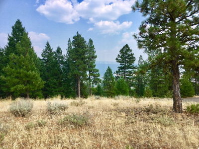 New Meadows Residential Lots & Land For Sale: Lot 6 Eagle Feather Road