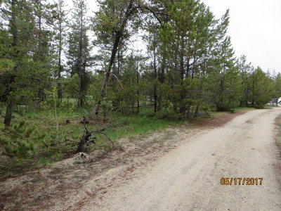 Residential Lots & Land For Sale: 159 Lodgepole Lane