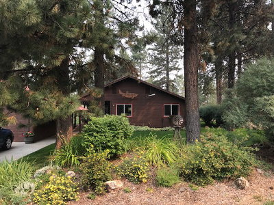 McCall Single Family Home For Sale: 781 Chad Loop
