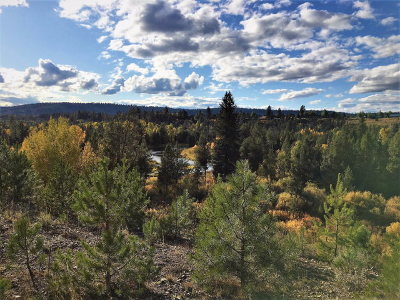 McCall Residential Lots & Land For Sale: Lot 14 River Ranch Road