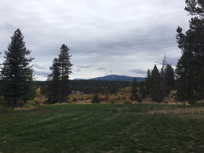 McCall Residential Lots & Land For Sale: Lot 2 Saddle Court